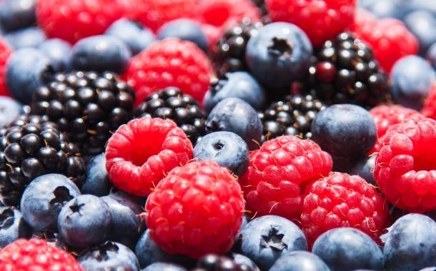 fructe-de-padure-afine-mure-zmeura